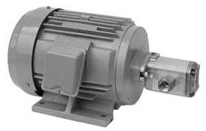 Daikin MFP100/2.2-2-1.5-10  MFP100 Series Motor Pump