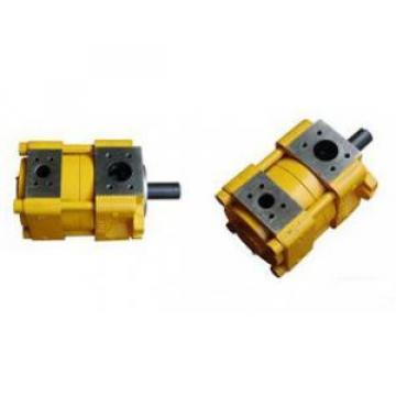 Sumitomo Canada QT Series Gear Pump QT63-125F-A