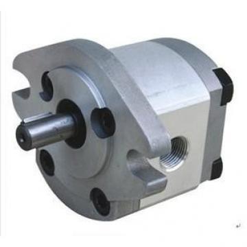 HGP-1A India Series Gear Pump