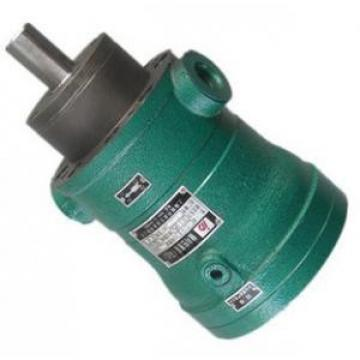40MCY14-1B  fixed displacement piston pump