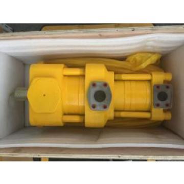 Sumitomo QT6123-160-6.3F Double Gear Pump