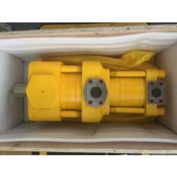 Sumitomo QT6262-125-80F Double Gear Pump
