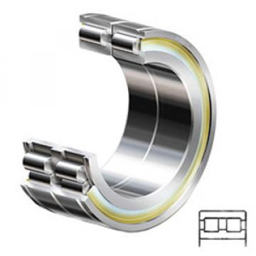 INA SL014920-C3 Cylindrical Roller Bearings